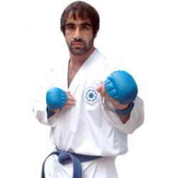 Best kumite champion?