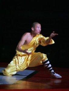 Shaolin-kung-fu-227x300