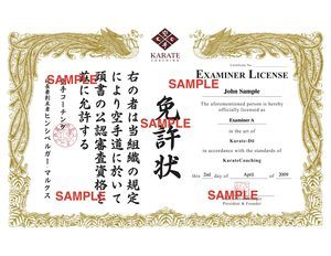 KC Examiner License sample