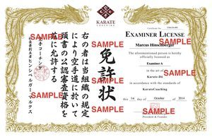 Examiner License SAMPLE